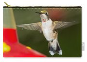 Immature Male Ruby-throated Hummer Carry-all Pouch