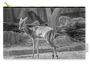 Impala    Black And White Carry-all Pouch