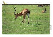 Impala Buck Carry-all Pouch