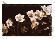 In A Line Carry-all Pouch by Diane Reed