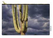 In Search Of That Perfect Saguaro  Carry-all Pouch