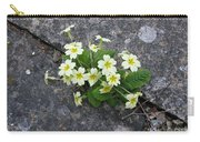 In The Garden Path Carry-all Pouch