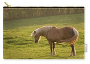 In The Light Of The Evening Sun Carry-all Pouch