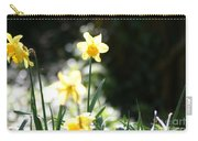 In The Springtime Sunshine Carry-all Pouch