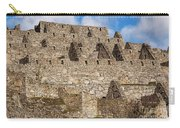 Inca Stone Ruins Carry-all Pouch