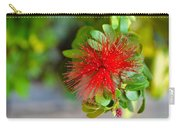 Indian Bottlebrush Flower Carry-all Pouch
