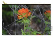 Indian Paint Brush 2 Carry-all Pouch