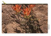 Indian Paintbrush At Bandelier Carry-all Pouch