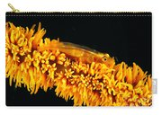 Indonesia, Goby Carry-all Pouch