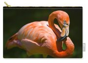 Infinity Pink Flamingo Carry-all Pouch