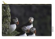 Ingolfshofthi Puffins Iceland 2855 Carry-all Pouch