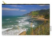 Inlet At Devils Punchbowl State Park Oregon  Carry-all Pouch