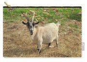 Inquisitive Goat Carry-all Pouch