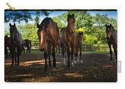 Inquisitive Horses Carry-all Pouch