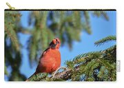 Inquisitive Male Cardinal Carry-all Pouch
