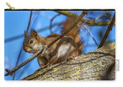 Inquisitive Squirrel Carry-all Pouch