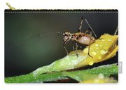 Insect And Morning Dew Carry-all Pouch