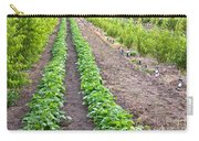 Intercropped Trees And Beans Carry-all Pouch