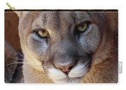 Into His Eyes Carry-all Pouch