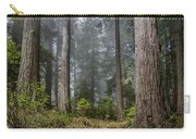 Into The Redwood Forest Carry-all Pouch
