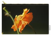 Into The Sunlight Carry-all Pouch