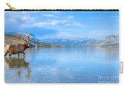 Into The Wild Blue Yonder Carry-all Pouch