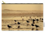 Iquique Chile Seagulls  Carry-all Pouch