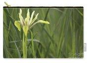 Iris Palaestina Carry-all Pouch