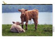 Irish Calves At Lough Eske Carry-all Pouch