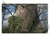 Ironbridge Cooling Tower Carry-all Pouch
