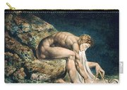 Isaac Newton Carry-all Pouch