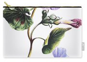 Isabella Sinclair - Pohue Carry-all Pouch