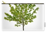 Isolated Young Maple Tree Carry-all Pouch by Elena Elisseeva