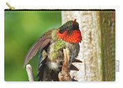 I've Got An Itch - Ruby-throated Hummingbird Carry-all Pouch