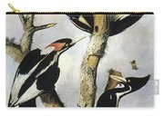 Ivory-billed Woodpeckers Carry-all Pouch