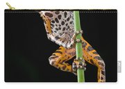 Ivory Coast Running Frog  Ghana Carry-all Pouch