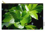 Ivy In Sunlight Carry-all Pouch