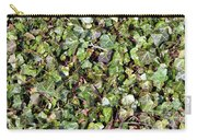 Ivy Ivy Ivy Carry-all Pouch