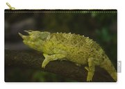 Jackson's Chameleon Carry-all Pouch