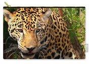Jaguar Adolescent Carry-all Pouch