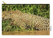 Jaguar Prowls The River's Edge Carry-all Pouch
