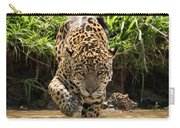 Jaguar Walking Through Muddy Shallows Towards Camera Carry-all Pouch