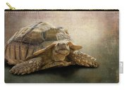Jamal The Tortoise Carry-all Pouch