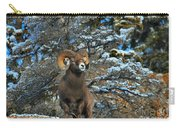 Jasper Alpha Male Carry-all Pouch