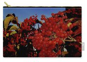 Jewels Of Autumn 4 Carry-all Pouch