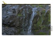 Jones Falls Carry-all Pouch