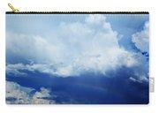 Joshua Tree Rainbow Carry-all Pouch