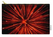July 4 Fireworks Carry-all Pouch