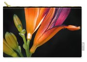 July 6 2010 Carry-all Pouch