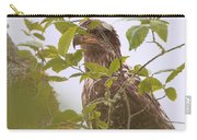 Juvenile Bald Eagle In Leaves Carry-all Pouch